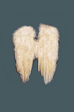 Engelsflügel weiß kleine Engelflügel Engel Christkind