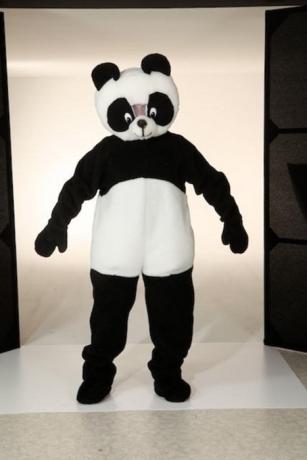 Pandabär Maskottchenkostüm Tierkostüm Pandabärkostüm
