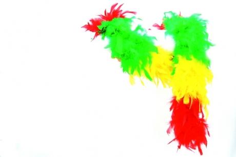 Federboa mehrfarbig Accessoires Faschingsparty Kostümfest Zubehör Mott