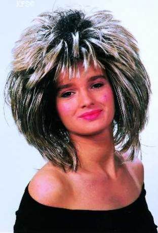 70er 80er Tina Rockstar Perücke Mottoparty Schlagerparty
