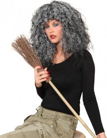 Crazy Witch Hexenperücke Damenperücke Halloween Fasching Accessoires