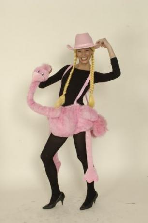Reitstrauß ausgefallenes Kostüm Karneval Fasching Party