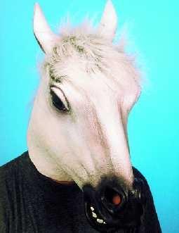 Pferd Pferdemaske weiß Schimmel Tiermaske Karneval Fasching