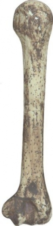 Knochen Faschingszubehör Neandertaler Höhlenmensch Kostümzubehör