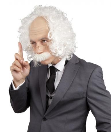 Professor Perücke + Brille Einstein Superhirn Lehrer Genie