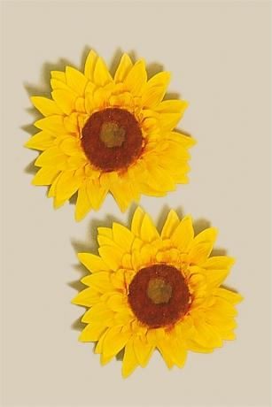 Sonnenblume Ansteckblume Hippie Schlagerparty Flower Power
