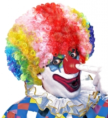 Clown Clownperücke dummer August bunt bunte Lockenperücke