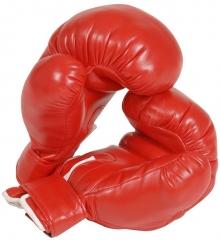 Boxhandschuhe rot Champion Boxer Kampfsport