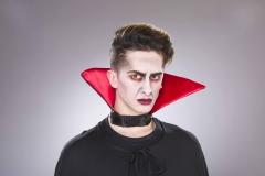Dracula Vampier Gothic Wende / Stehkragen