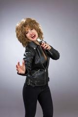 Tina Perücke Rockstar Berühmtheiten Mottoparty Schlagerparty