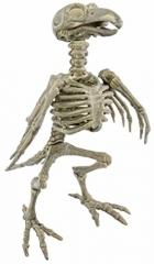 Vogelgerippe Vogelskelett Halloweendekoration Skelett fluoreszierend