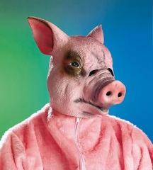 Schwein Schweinemaske Vollkopf Karneval Fasching Party