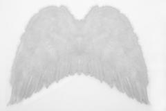Federflügel Engel Fasching Karneval Weihnachten