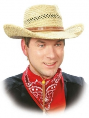 Cowboyhut Strohhut Western