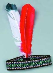Indianer Federschmuck Karneval Fasching Kostüm Party