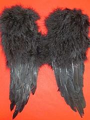 Teufelsflügel schwarz Halloween Karneval Party