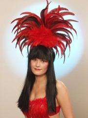 Rio Samba Federschmuck Karneval Fasching Kostüm rot