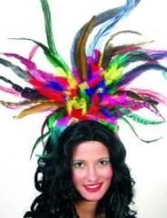 Samba Brasil Federkopfschmuck Karneval Fasching bunt
