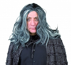 Gruselgraf Vampir Baron Hallowen Perücke grau Mittelalterperücke