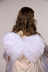 Engelflügel aus echten Federn Engel Christkind Kinderflügel