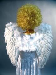 Engelsflügel Engel Christkind Weihnachten Karneval