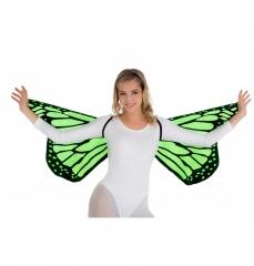 Schmetterling Schmetterlingsflügel bunte Flügel